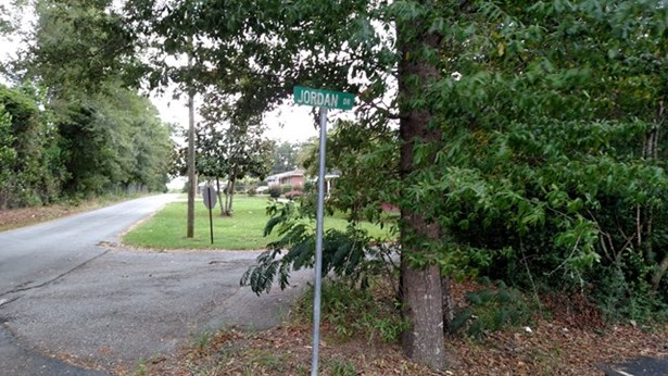 Residential Building Lot - Roberta, GA (photo 2)