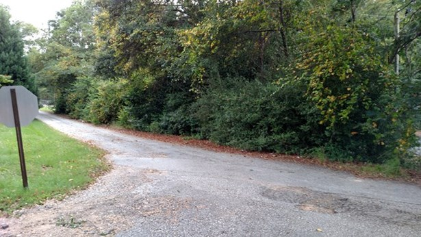 Residential Building Lot - Roberta, GA (photo 3)