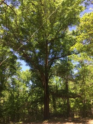 Land/Farm - Gordon, GA (photo 4)