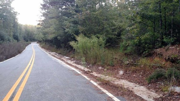 Residential Building Lot - Forsyth, GA (photo 1)