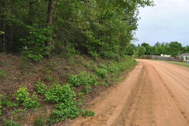 Land/Farm - McIntyre, GA (photo 4)