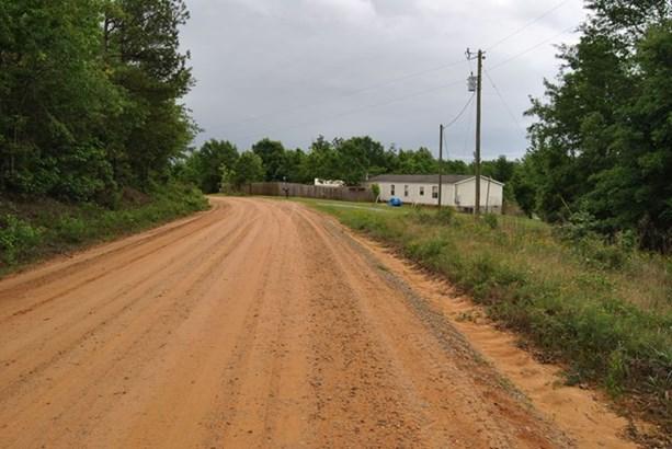 Land/Farm - McIntyre, GA (photo 5)
