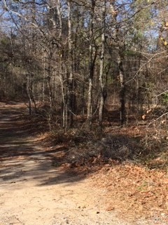 Residential Building Lot - Byron, GA (photo 1)