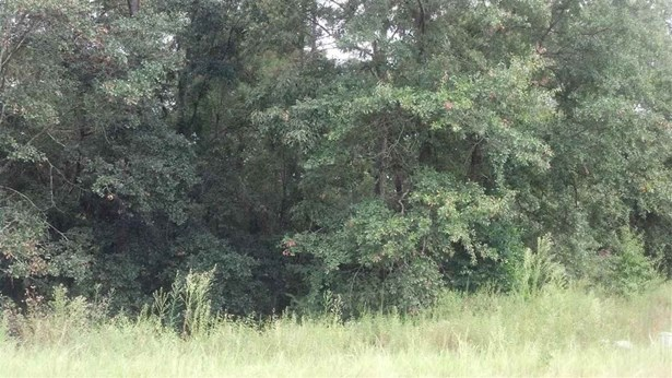 Residential Lot - Bonaire, GA (photo 1)