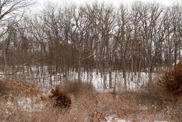 8995 Scully Road, Whitmore Lake, MI - USA (photo 1)
