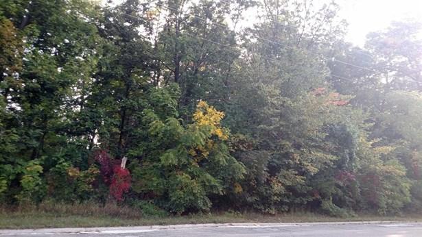0 Nine Mile Road, Whitmore Lake, MI - USA (photo 1)