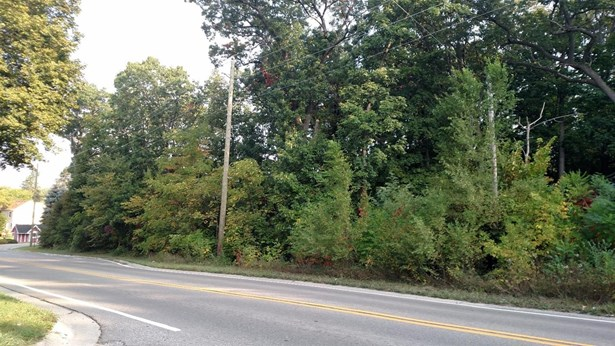 0 Nine Mile Road, Whitmore Lake, MI - USA (photo 2)