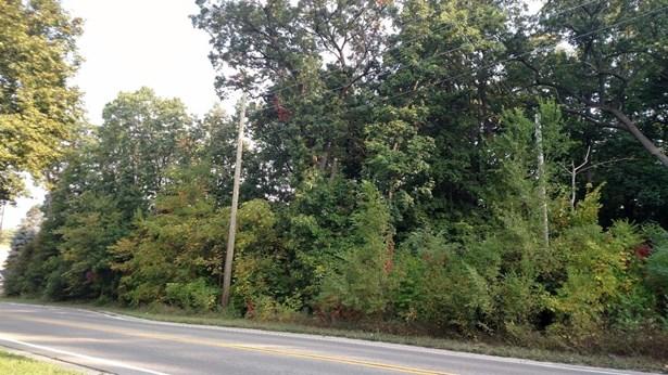 0 Nine Mile Road, Whitmore Lake, MI - USA (photo 3)