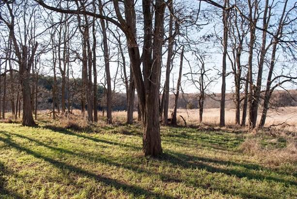 9745 Scully Road, Whitmore Lake, MI - USA (photo 2)