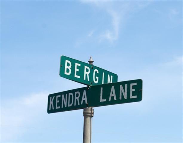 0 Bergin Road, Hartland, MI - USA (photo 3)