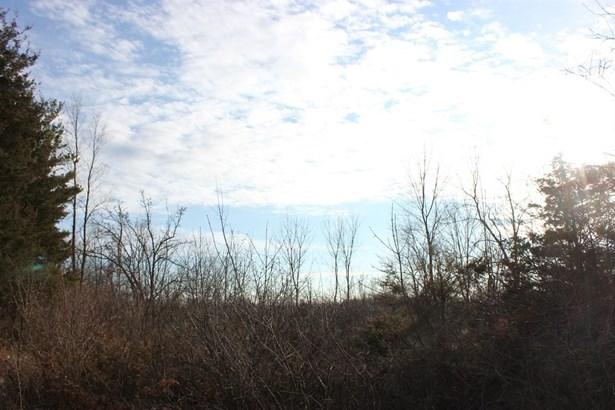 0 Allen Road, Bridgewater, MI - USA (photo 1)