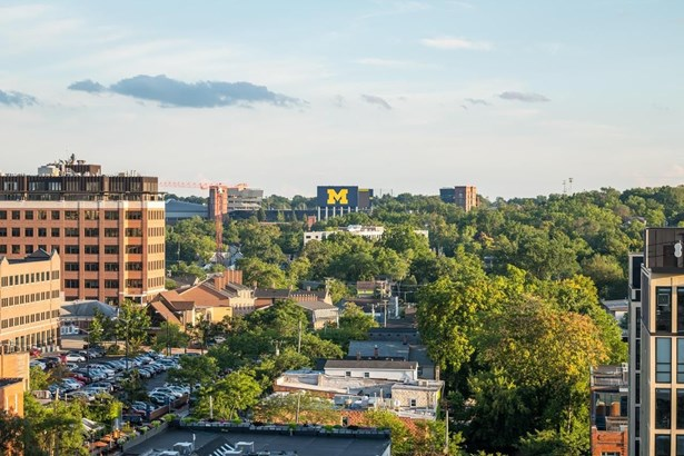 111 North Ashley Street 1003, Ann Arbor, MI - USA (photo 2)