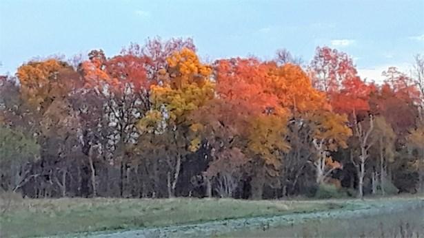 3984 Storybook Lane, Whitmore Lake, MI - USA (photo 2)