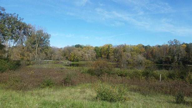 4715 Ridge Creek Lane, Ann Arbor, MI - USA (photo 1)