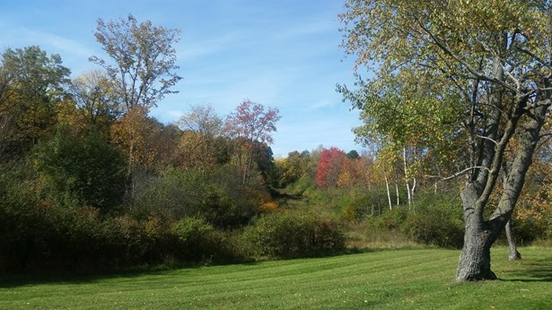 4715 Ridge Creek Lane, Ann Arbor, MI - USA (photo 2)