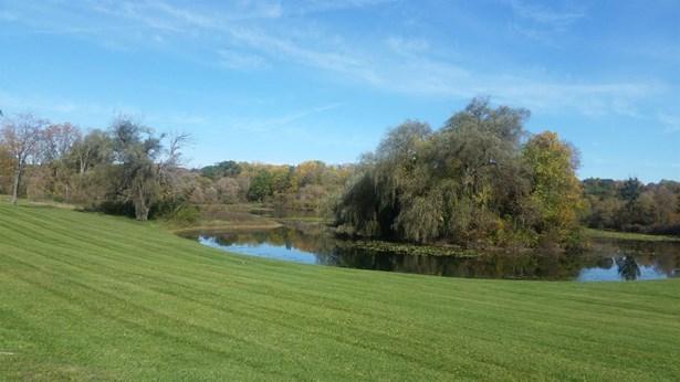 4715 Ridge Creek Lane, Ann Arbor, MI - USA (photo 4)
