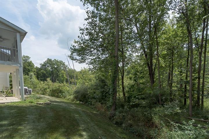 1112 Nature Trail, Manchester, MI - USA (photo 2)