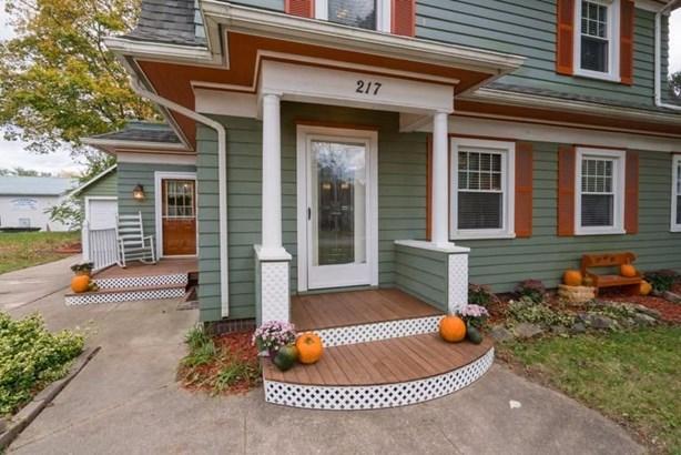 217 South Clinton, Stockbridge, MI - USA (photo 4)