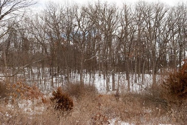 8855 Scully Road, Whitmore Lake, MI - USA (photo 1)