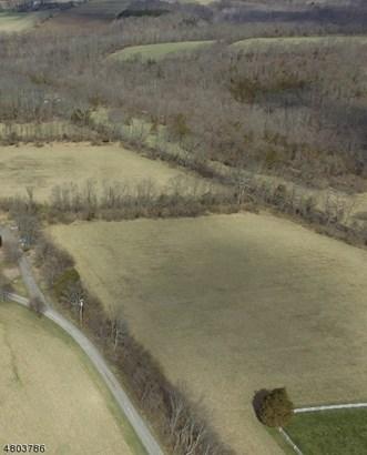 155 County Road 513, Alexandria Township, NJ - USA (photo 1)