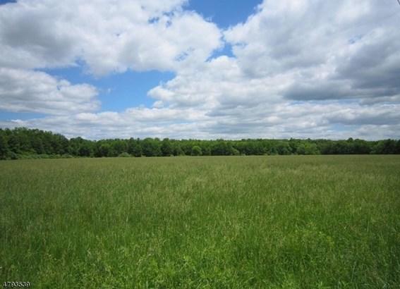 796 County Road 519, Kingwood, NJ - USA (photo 3)