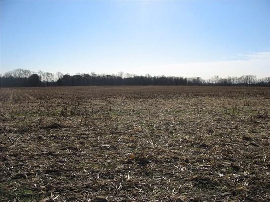 Tbd North County Road 575 E, Danville, IN - USA (photo 3)