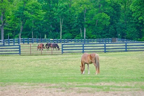 19815 Mule Barn Road, Westfield, IN - USA (photo 4)