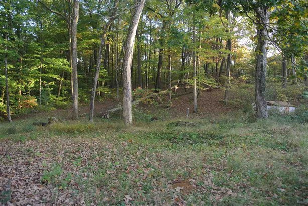 8779 W State Rd 45, Bloomington, IN - USA (photo 5)