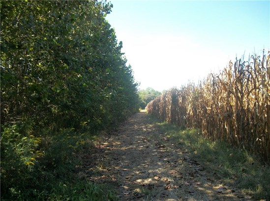 00 Co. Rd. 600 W, Reelsville, IN - USA (photo 5)