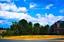 0 Windsor Circle, Elon, NC - USA (photo 1)