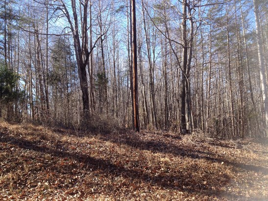 200 Meador Lake Road, Reidsville, NC - USA (photo 1)
