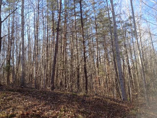 200 Meador Lake Road, Reidsville, NC - USA (photo 2)