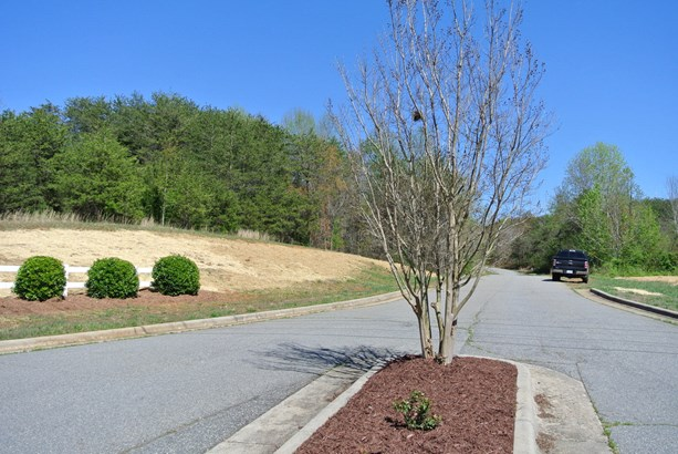 Lot 115 Emmas Way, East Bend, NC - USA (photo 5)