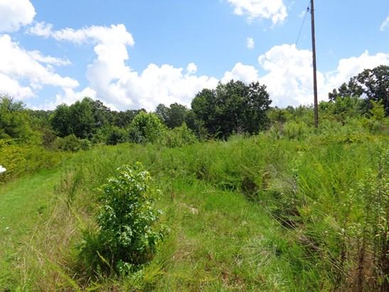 00 Pelham Loop Road, Pelham, NC - USA (photo 1)