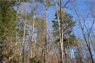 8110 Brittains Field Road, Oak Ridge, NC - USA (photo 1)