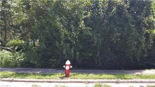 519 Smith Street, High Point, NC - USA (photo 1)