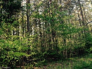 668 Scout Road, Lexington, NC - USA (photo 4)