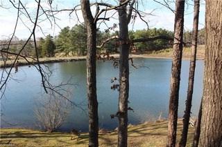 1238 Quandary Lake Lane, Graham, NC - USA (photo 1)