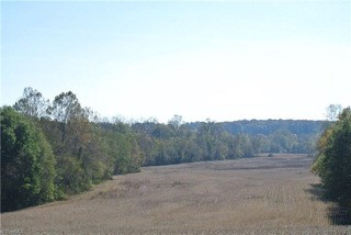 01 Logan Creek Road, East Bend, NC - USA (photo 1)