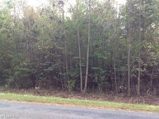 1619 Bloomtown Road, East Bend, NC - USA (photo 1)