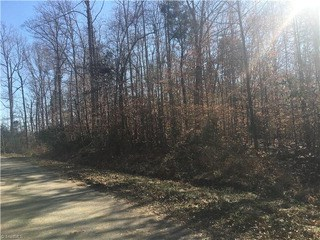 Lot 55/56 Willow Oak Drive, Thomasville, NC - USA (photo 4)
