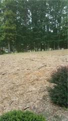 412 Bent Grass Lane, Eden, NC - USA (photo 4)