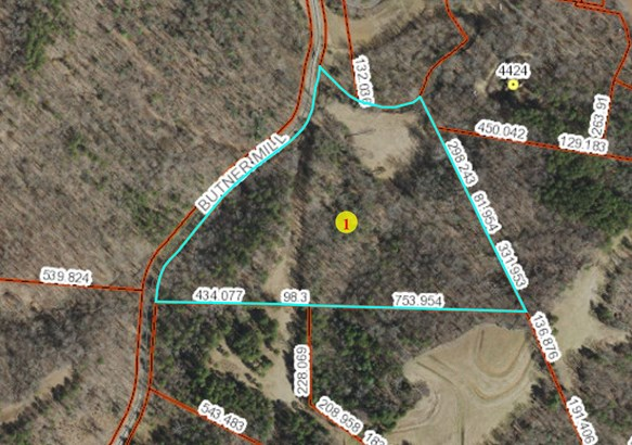 01 Butner Mill Road, East Bend, NC - USA (photo 1)