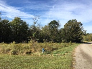1036 Shenandoah Trail, Boonville, NC - USA (photo 1)