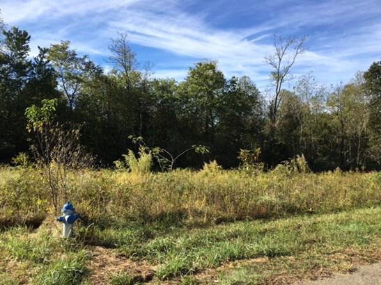 1036 Shenandoah Trail, Boonville, NC - USA (photo 4)
