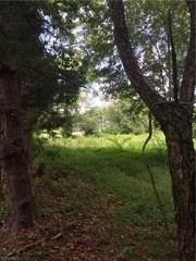 3950 Straw Hat Road, Greensboro, NC - USA (photo 5)