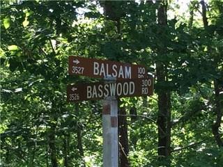 239 Basswood Road, Troy, NC - USA (photo 1)