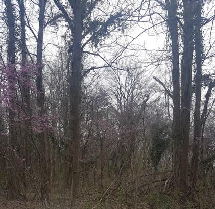 0 Fuller Mill Road, Thomasville, NC - USA (photo 3)