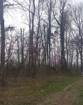 0 Fuller Mill Road, Thomasville, NC - USA (photo 4)