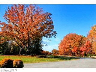 Lot 64 Leeward Drive, Stokesdale, NC - USA (photo 3)